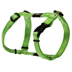 Alpinist Harness